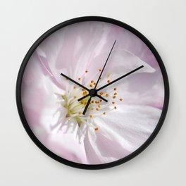 Spring 287 cherry pink maro Wall Clock
