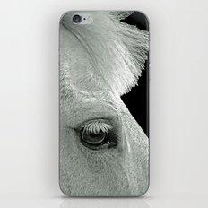 HORSE LOVE iPhone & iPod Skin