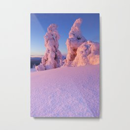 I - Sunset over frozen trees on a mountain, Levi, Finnish Lapland Metal Print
