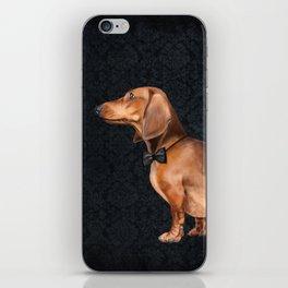 Elegant dachshund. iPhone Skin