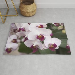 Longwood Gardens Orchid Extravaganza 4 Rug
