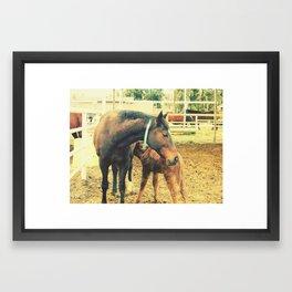 Horse love Framed Art Print
