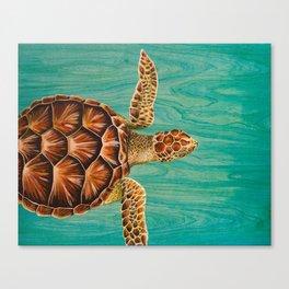 Sea Turtle Swimming Canvas Print