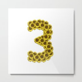 Isolated sunflower number 3 Metal Print