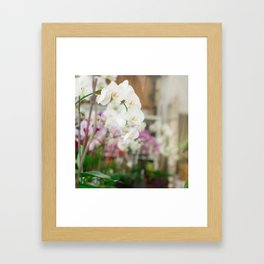 The Orchid Shop in Paris Framed Art Print