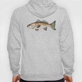 Redfish on white Hoody