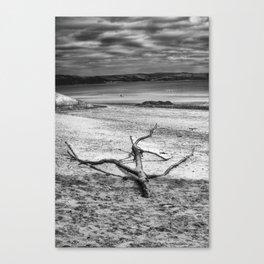 Driftwood 3 mono Canvas Print