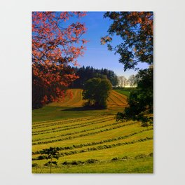 Tree watching in springtime Canvas Print