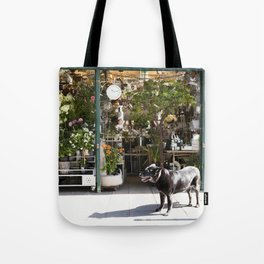 Dog in the Flower District, Paris - travel photography Tote Bag