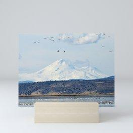 Mt Shasta and Waterfowl Mini Art Print