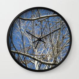 Crisp Cold Florida Morning Wall Clock