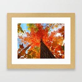 Famous fall 9 Framed Art Print