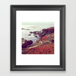 Ice Plants and Big Sur Framed Art Print