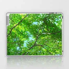 Canopy of Green, Leafy Branches with Blue Sky Laptop & iPad Skin