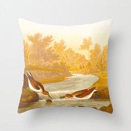 Little Sandpiper Bird Throw Pillow