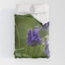 Purple Columbine Comforters