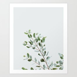 Botanical 1 Art Print