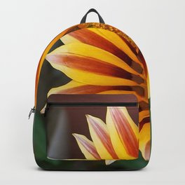 Single Flower Close Up Gazania Red Stripe Backpack