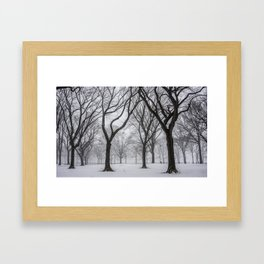 NYC Winter In Central Park Framed Art Print