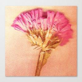 Fleurs de l'éternité Canvas Print