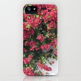 socal bougainvillea iPhone Case