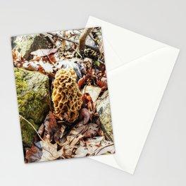 Morel Mushroom in the Wild Stationery Cards