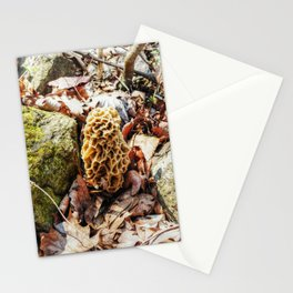 Morel Mushroom in the Wild Stationery Cards