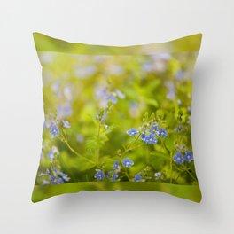 Beautiful blue speedwell flowerets Throw Pillow