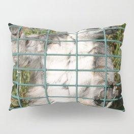 Ring Tailed Lemur Pillow Sham