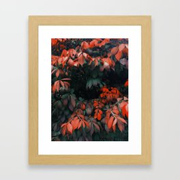 Flowers Coming At Me Framed Art Print