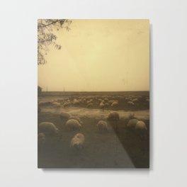   sheep at dusk   Metal Print