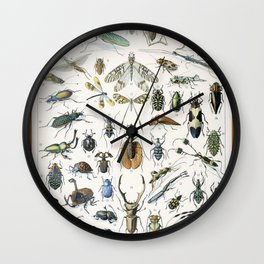 Adolphe Millot- Vintage Insect Print Wall Clock