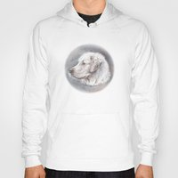 golden retriever Hoodies featuring Golden Retriever Dog Drawing by Lena Svalfors Hedin