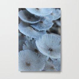 Close Mushroom Tops Metal Print