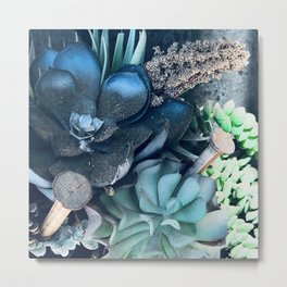 Surreal Succulent Garden in Exotic Blue Colors Metal Print
