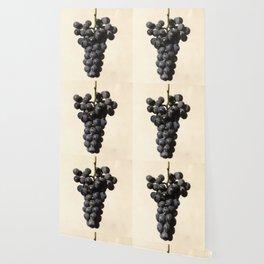Vintage Concord Grapes Illustration Wallpaper
