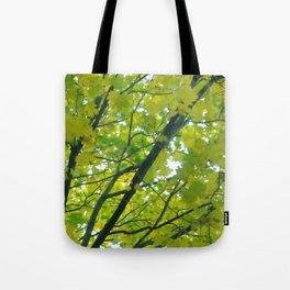 Lush ~ yellow-green leaves 4 U! ~ summer tree Tote Bag