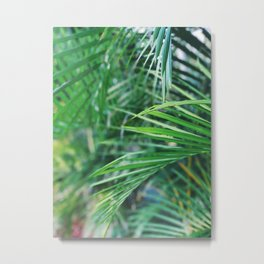 Palm Fever Metal Print