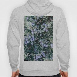 Botanical Gardens - Evergreen #335 Hoody