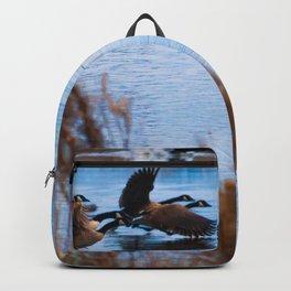 Water Dance Backpack