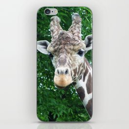 Whatcha Looking At? iPhone Skin