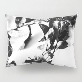 Bay leaves 4 Pillow Sham