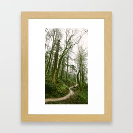 Forest // Path Framed Art Print