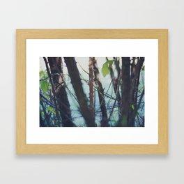 Les Landes (7) Framed Art Print