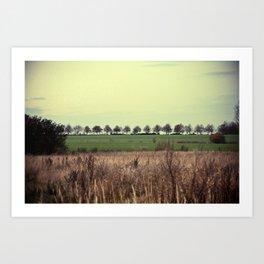 Offenes Land Art Print