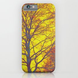 very sunny day iPhone Case