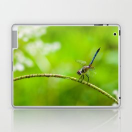 Perched Dragonfly  Laptop & iPad Skin