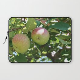 Apples Laptop Sleeve