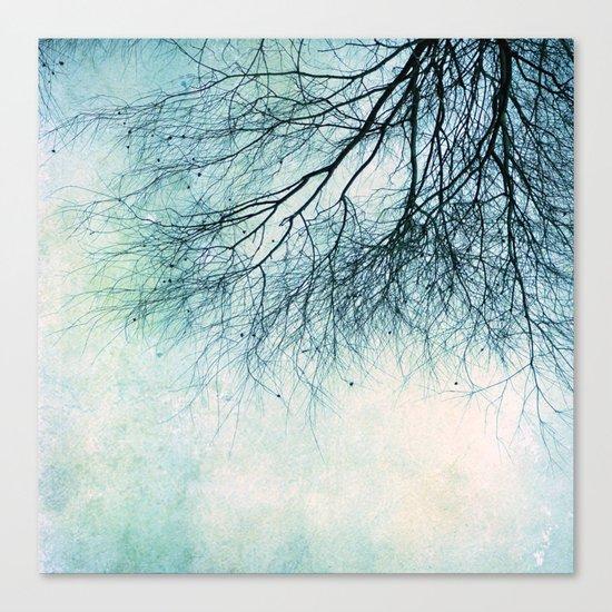 winter smooth Canvas Print