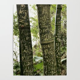 Carvings on Bamboo Poster